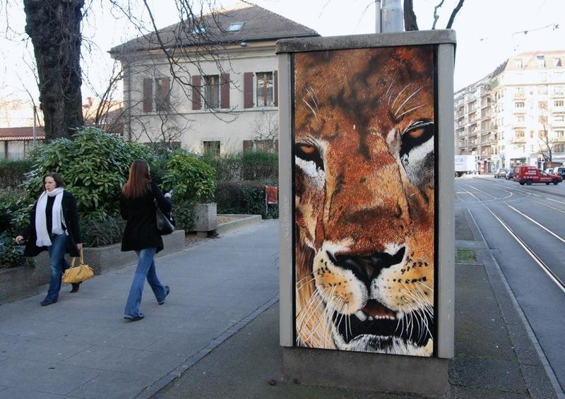 080207_lion1
